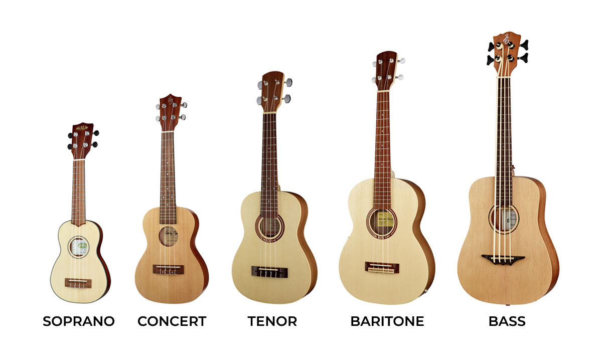 The Five Main Sizes of Ukulele